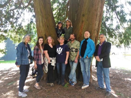 Tree Walk 2