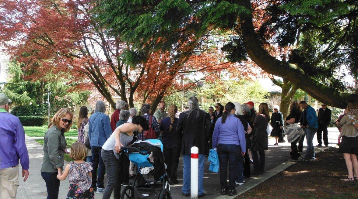 Tree Walk 5